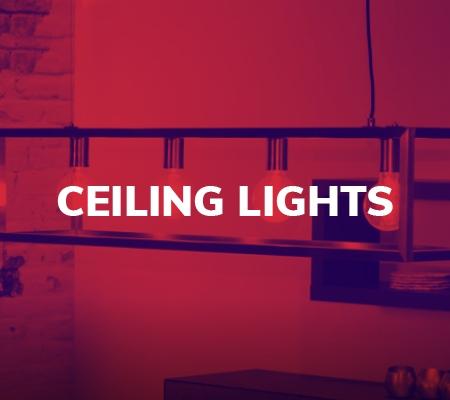 Lucide 20 Ceiling Lights
