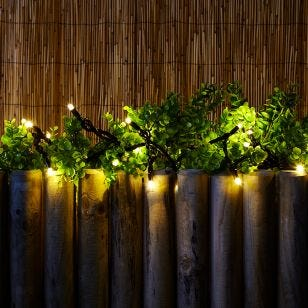 Connectable Warm White LED String Lights - 50 Lights