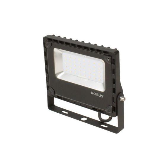 Robus Champion 30W Cool White LED Floodlight - Black